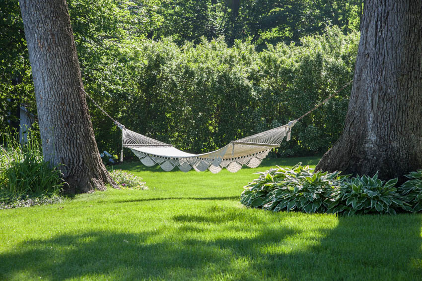 Backyard with hammock hanging from trees