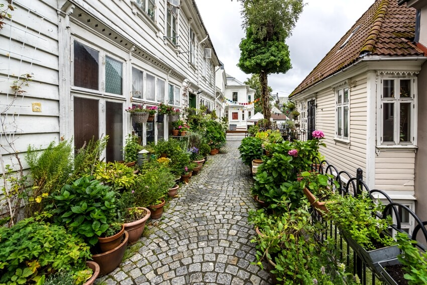 Cobbled street nicely decorated with plants and flowers