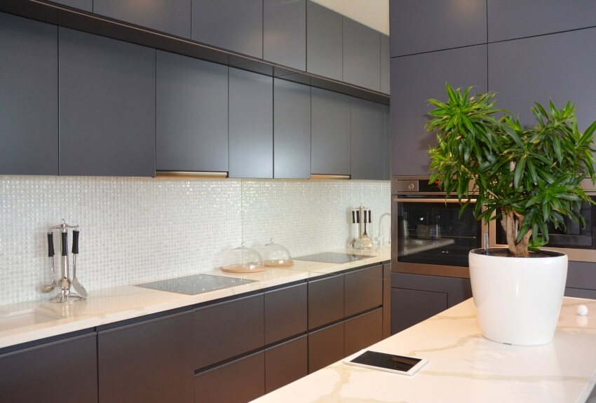 Dark kitchen cabinets with marble countertops and a pot with plants on the island