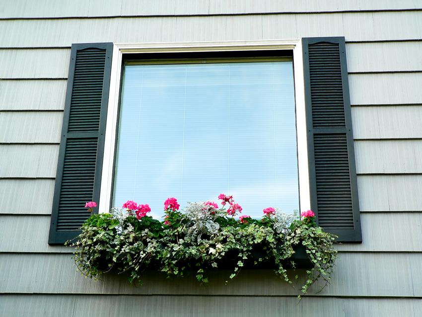 Exterior house with siding glass window powder coated aluminum shutters plants and flowers