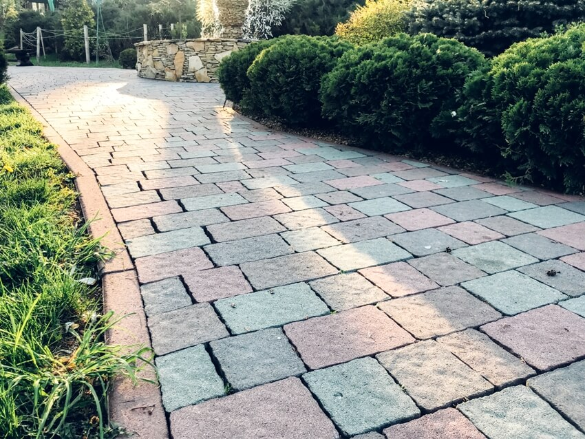 Garden with walkway cobblestone pavers and tile plants evergreen shrubs and deciduous trees landscaping