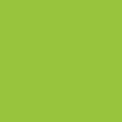 Benjamin Moore 2026-10 Lime Green