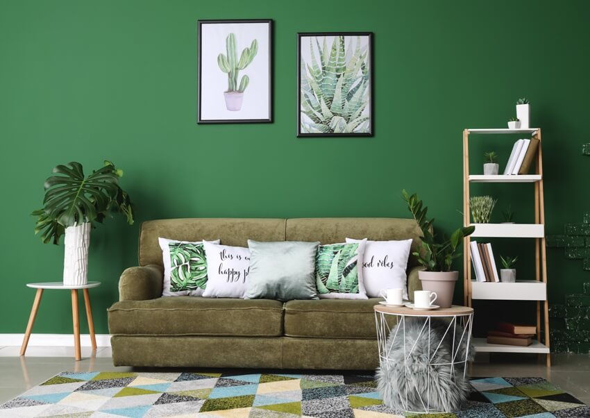 Modern room interior with furniture and framed plants paint on green wall