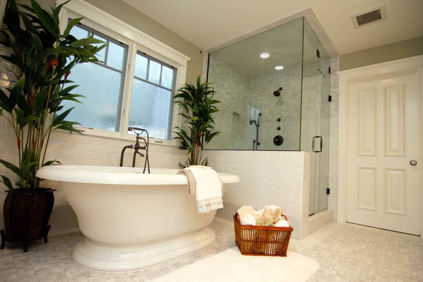 Obscure glass window bathroom indoor plant bathtub glass door shower