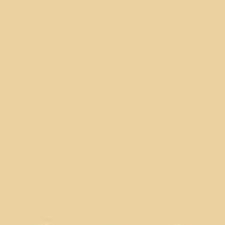 Porter Paints 13185-2 Muted Yellow