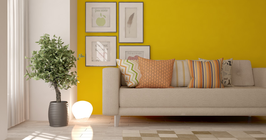 Sofa chair indoor plant yellow wall white curtain