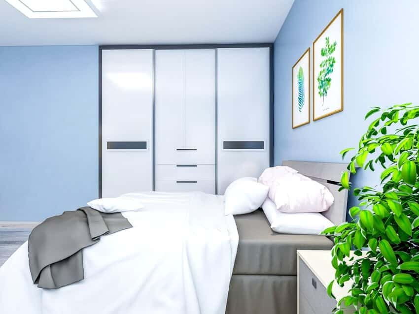 Spacious bedroom design with solid wood custom closet and double bed in the blue walls coffee table and green plants beside the bed