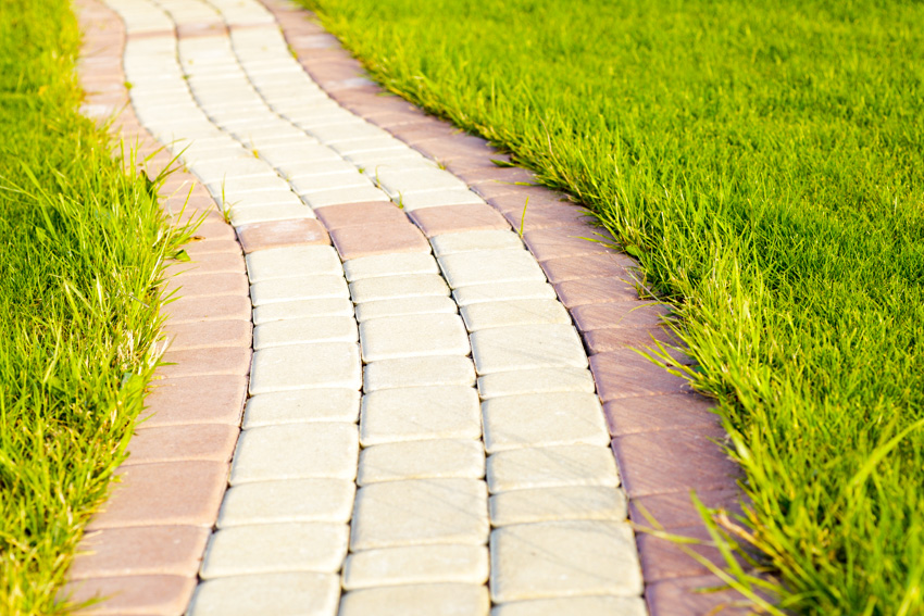 Walkway composed of white and red bricks grass