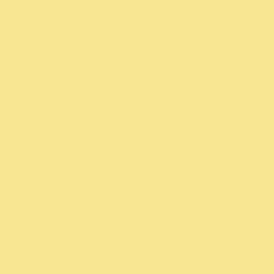 Fun Yellow #SW 6908